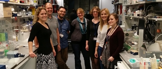 Members of the laboratories of Dr. Crabtree and Dr. Channon at Wellcome Trust Centre for Human Genetics, Oxford University